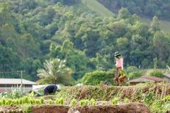 Myanmar landbouwer Stock Afbeeldingen