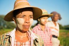 Myanmar landbouwer die zich in rij bevindt Stock Foto