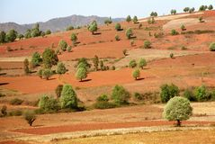 Myanmar landscape. Typical landscape in central Myanmar near Kalaw Royalty Free Stock Image