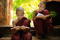 Myanmar little monk reading book outside monastery. Southeast Asian Myanmar little monk reading book outside monastery, Buddhist teaching stock photography