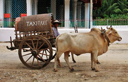 Myanmar local taxi Stock Image