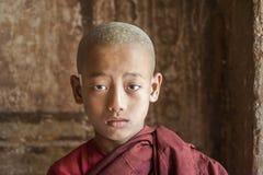 Myanmar michaelita zdjęcia royalty free