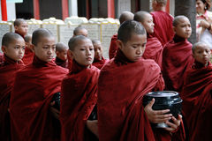 Myanmar novice monks in line Royalty Free Stock Photo