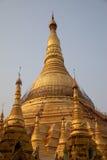 myanmar pagodashwedagon Royaltyfri Foto