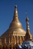 myanmar pagodashwedagon yangon Royaltyfria Foton