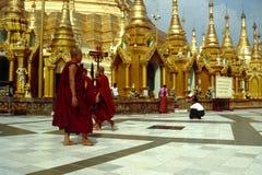 myanmar pagodashwedagon yangon Fotografering för Bildbyråer