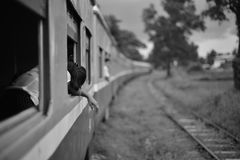 Myanmar train Royalty Free Stock Photo