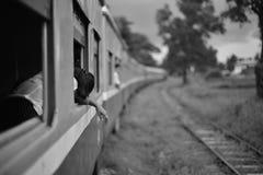 Myanmar trein Royalty-vrije Stock Foto