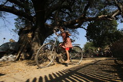Myanmar unge Arkivfoton