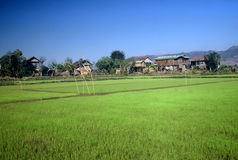 myanmar wioska Fotografia Stock