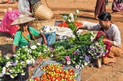 Myanmar życie Obrazy Stock