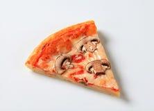 Mycètes de pizza image libre de droits