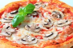 Mycètes de pizza images libres de droits