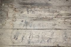 Mycelium traces on basement floor. Old  fungus attack on wood where a carpet has maintained the humidity Stock Photos