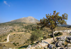 Mycenae view, Greece Stock Images