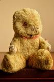 Mycket älskade Teddy Bear Royaltyfria Bilder