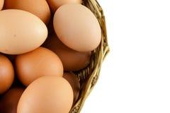 Mycket av ägg sätt i en vide- korg i (isolerad) vit bakgrund, royaltyfria foton