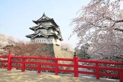 Mycket blommade körsbärsröda blomningar och japansk slott Royaltyfria Foton