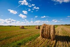 Mycket en höstack på skördade fält Molnig himmel i bakgrunden Fokusera på höstacken på den högra förgrunden Fotografering för Bildbyråer
