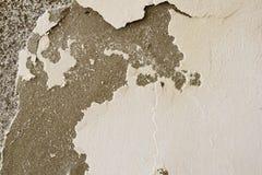Mycket förmultnad vägg Abstrakt förfall och dekis royaltyfri foto