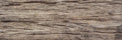 Mycket gammal träbakgrund, closeup trätexturBANER, LÅNGT FORMAT royaltyfria bilder