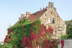 Mycket gammalt hus med den härliga bevuxna fasaden som delen av naturen royaltyfri foto