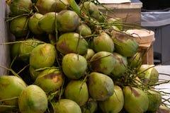Mycket gräsplan och nya kokosnötter royaltyfri foto