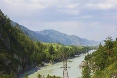 Mycket härlig bergflod Katun 40 grader glaserar mer russia ruskiga siberia än Arkivfoto