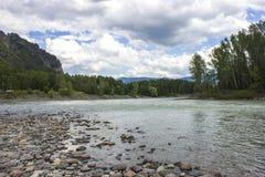 Mycket härlig bergflod Katun 40 grader glaserar mer russia ruskiga siberia än Arkivbild