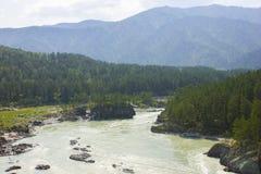 Mycket härlig bergflod Katun 40 grader glaserar mer russia ruskiga siberia än Royaltyfri Fotografi