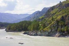 Mycket härlig bergflod Katun 40 grader glaserar mer russia ruskiga siberia än Arkivfoton