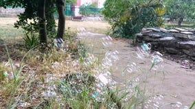 Mycket härliga såpbubblor som flyger på grön bakgrund, closeup Stora färgrika såpbubblor i natur Tvål för många bubblor lager videofilmer