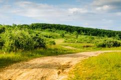 Mycket härligt sommarlandskap Träd i ett fält med det mörka molnet Arkivbild