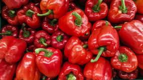 Mycket klockor för röd peppar i marknaden Royaltyfri Fotografi