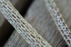 Mycket lång vit utgjutelseormhud på trägolv fotografering för bildbyråer
