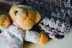 Mycket liten björn Royaltyfri Bild