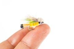 Mycket liten fiskefluga på fingerspets Arkivfoto