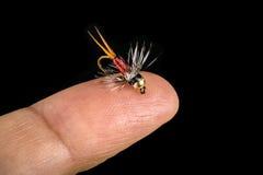 Mycket liten fiskefluga på fingerspets som isoleras på svart Royaltyfri Fotografi