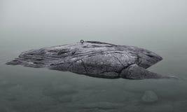 Mycket liten holme på Östersjön royaltyfri foto