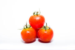 Mycket liten ny tomat Royaltyfri Foto