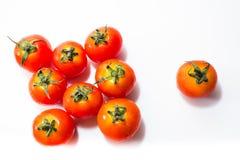 Mycket liten ny tomat Fotografering för Bildbyråer