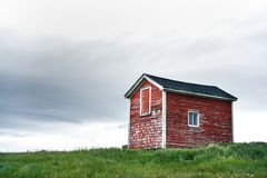 Mycket liten röd byggnad i fält i Newfoundland arkivbilder