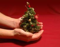 mycket liten tree för jul royaltyfri fotografi