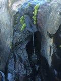 mycket liten vattenfall Royaltyfria Bilder