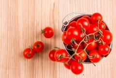 Mycket litet behandla som ett barn tomater i en liten hink Royaltyfri Foto