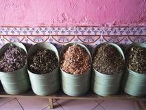 Mycket moroccan krydda Fotografering för Bildbyråer