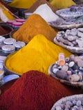 Mycket moroccan krydda Arkivfoton