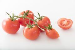 Mycket nya tomater royaltyfri fotografi