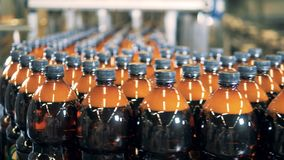 Mycket plast- ölflaskor får transporterade av transportören lager videofilmer
