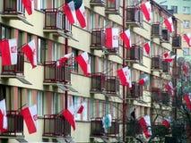 Mycket polska flaggor royaltyfri fotografi